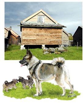 p-2147-elhound_family.jpg